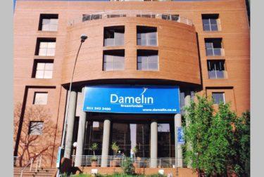 damelin-1